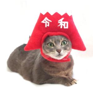 令和の帽子